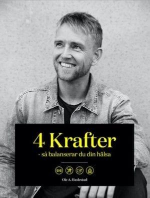 4 KRAFTER (svensk E-bok)